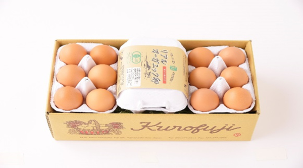 【ふるさと納税】定期便!リアルオーガニック卵18個×10ヶ月(甲斐B-22)