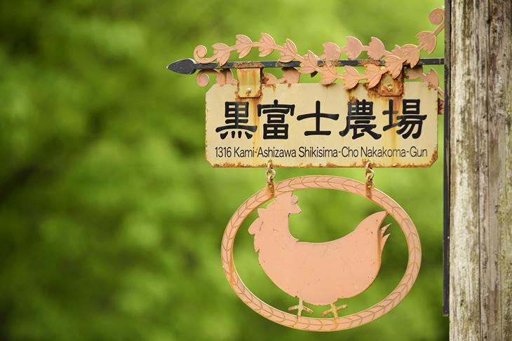 【ふるさと納税】人気の森のバウムクーヘン2個&森の木霊10個セット(甲斐B-32)