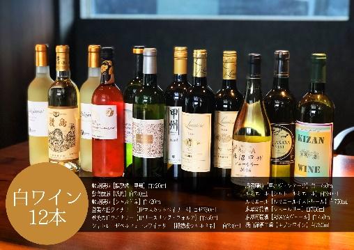 【ふるさと納税】AD-127 白ワイン 飲み比べ 12本セット Presents by Katerial
