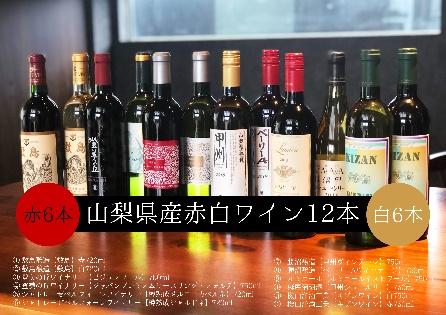 【ふるさと納税】AD-129 赤白ワイン 飲み比べ 12本セット Presents by Katerial