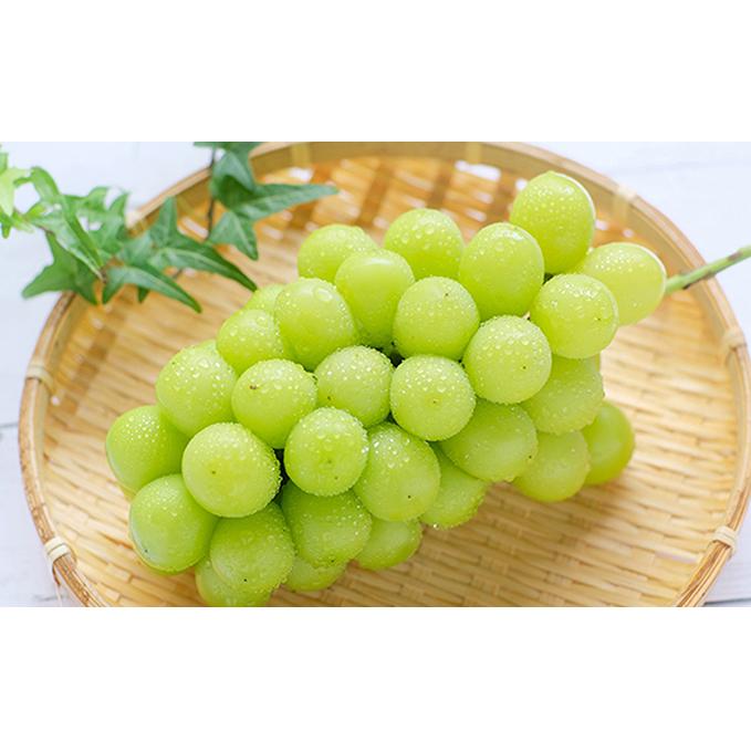 【ふるさと納税】採れたて 山梨のシャインマスカット 約4kg 【果物類・ぶどう・マスカット・フルーツ】 お届け:2020年8月下旬~2020年9月中旬