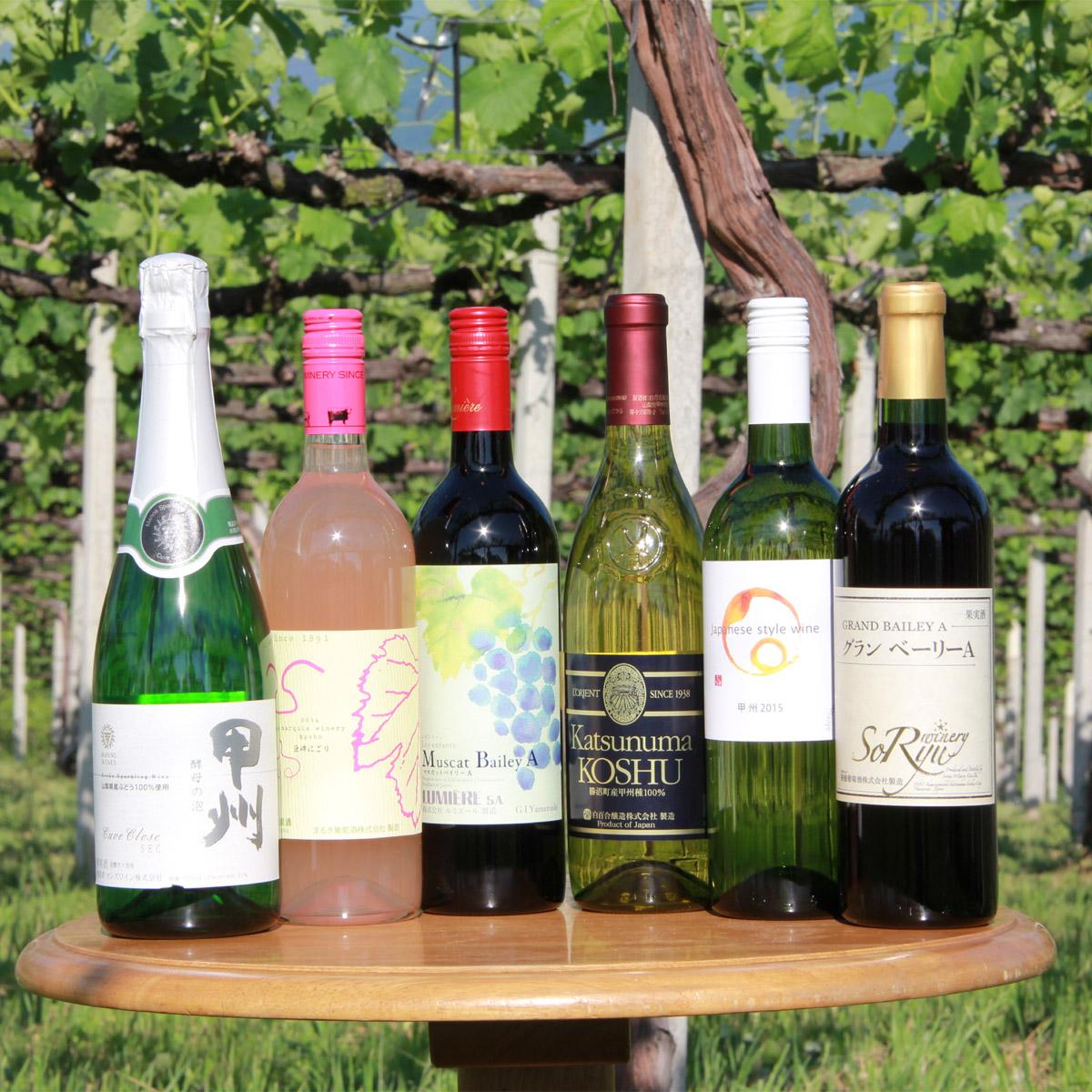 【ふるさと納税】山梨ワインバラエティー6本セット(TO-52)山梨ワインを楽しめるタイプの違う6品種のチョイス