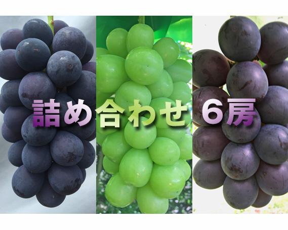 【ふるさと納税】旬のぶどう 詰め合わせ 3種 計6房(約3kg) / 葡萄 ブドウ 果物 セット 山梨県
