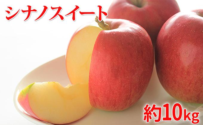 【ふるさと納税】【2019年度産】シナノスイート家庭用10kg 【果物類・フルーツ・リンゴ・林檎】 お届け:2019年10月15日~2019年11月10日