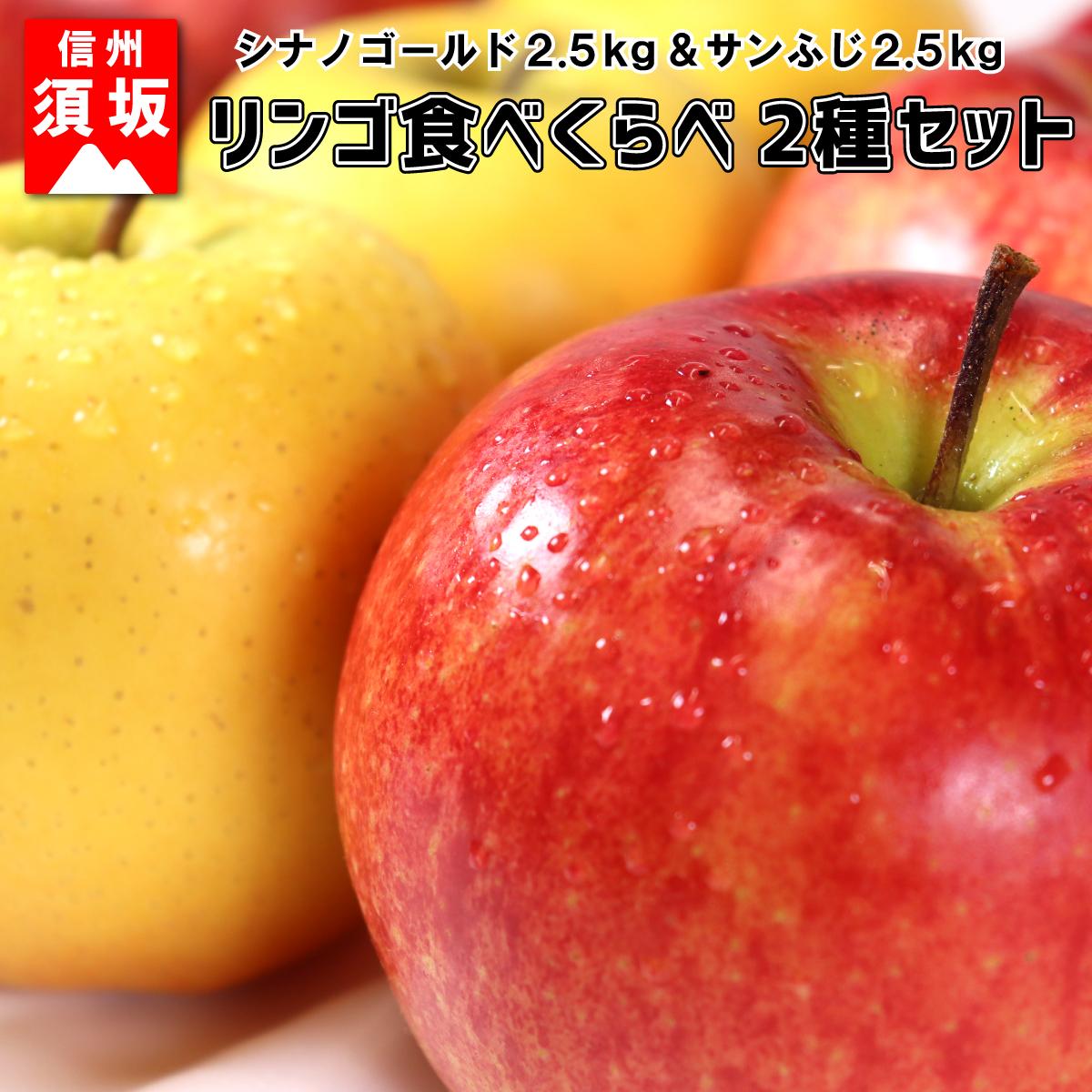 【ふるさと納税】【信州須坂のりんご】食べくらべ二種セット 約5kg 【果物・フルーツ】 お届け:2020年11月1日~11月30日