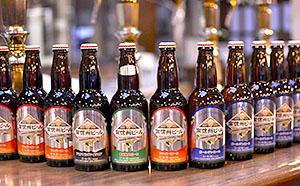 【ふるさと納税】南信州ビール 4種飲み比べセット 【お酒/ビール】