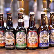 【ふるさと納税】南信州ビール「飲み比べセット」(4種×5本) 【お酒・ビール・セット・詰め合わせ】