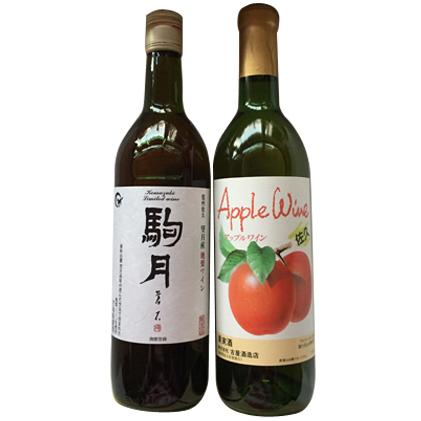 【ふるさと納税】佐久のワイン 2本セット リンゴワイン 地梨ワイン ジューシー フルーティー 信州 ご当地 お取り寄せ 飲み比べ 【ワイン/お酒/リンゴワイン】
