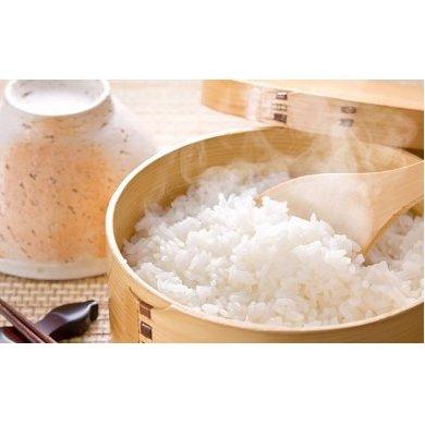【ふるさと納税】清流米 たきたて 5kg 【米・お米/精米】