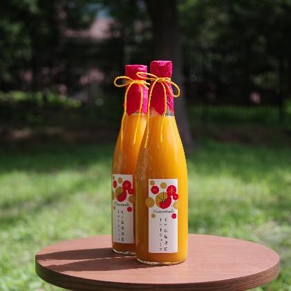 【ふるさと納税】トマトードジュース【黄金&紅黄】  【果汁飲料・野菜飲料・トマトジュース】