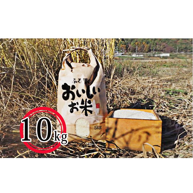 【ふるさと納税】長和町産コシヒカリ10kg 【お米・コシヒカリ・精米】