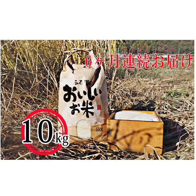 【ふるさと納税】《6カ月連続お届け》長和町産コシヒカリ10kg 【定期便・お米・コシヒカリ・頒布会】