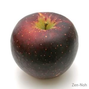 【ふるさと納税】季節のりんご『秋映』(5kg)(予約制)