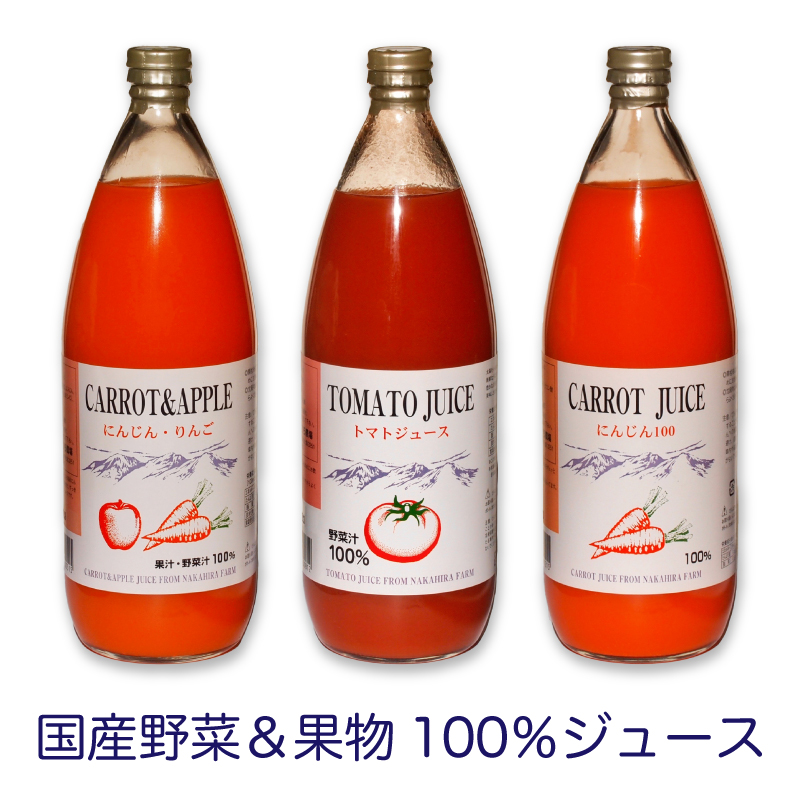【ふるさと納税】国産野菜&果物100%ジュース  1000ml×3本(3種×1本)