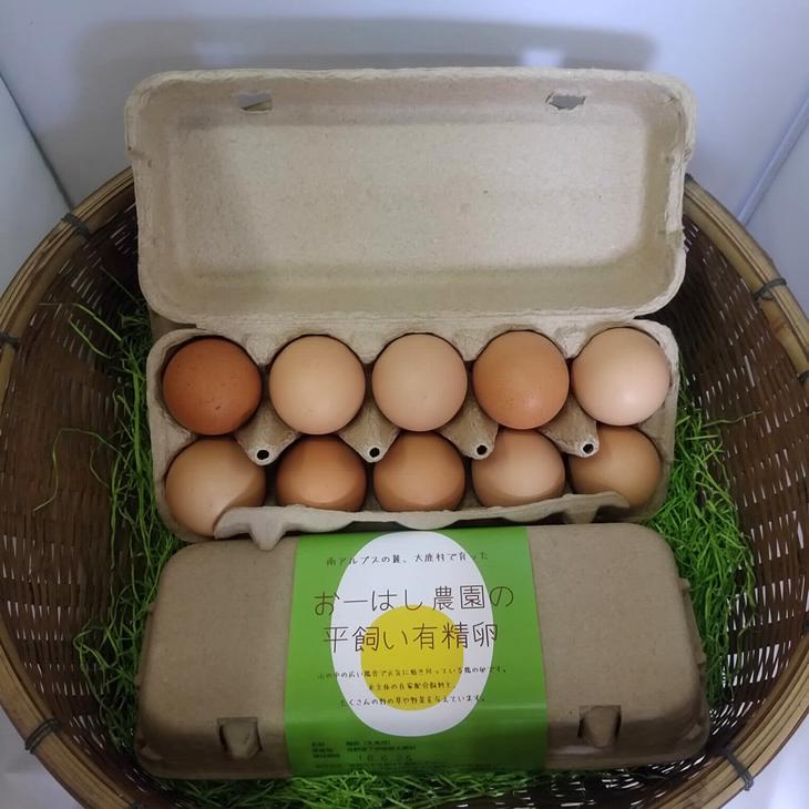 【ふるさと納税】おーはし農園の平飼い有精卵 10個×5パック
