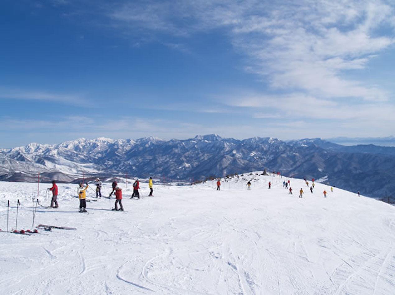 白馬 八方尾根 スキー 場