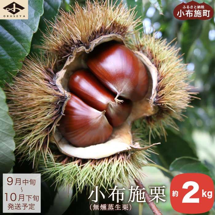 先行予約 日本三大栗の一つ 毎年好評 小布施 ならではの 秋 の AL完売しました 味覚 くり 和栗 生栗 長野 信憑 果物 フルーツ おぶせ 約2kg オブセ 小布施栗 信州 ふるさと納税 2kg
