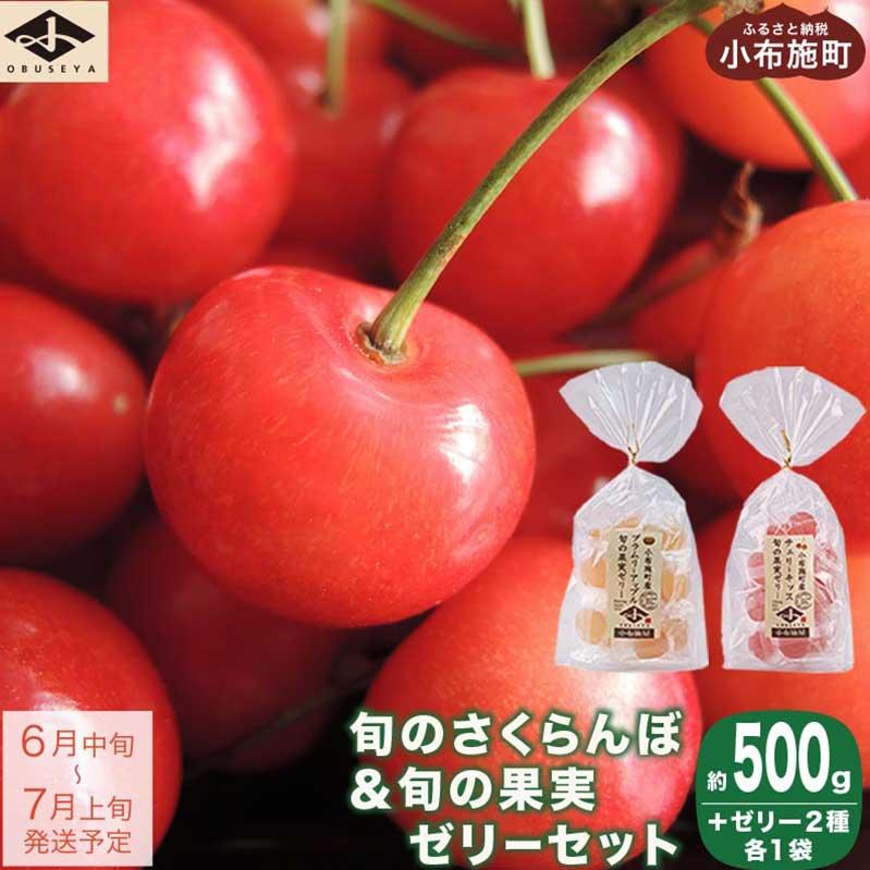 【ふるさと納税】佐藤錦 約500g