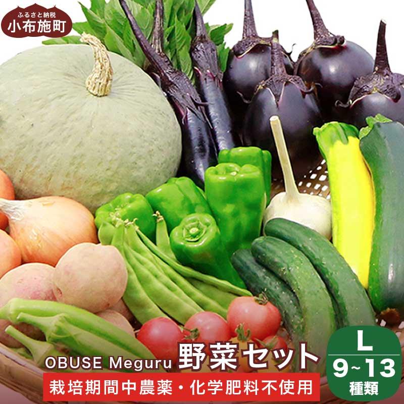 【ふるさと納税】新規就農者応援コース  OBUSE Meguru 野菜セット