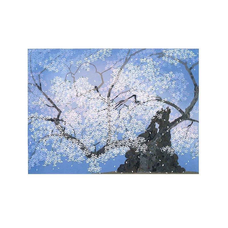 【ふるさと納税 山高神代桜】中島千波 山高神代桜, HOMES interior/gift:b48cc530 --- triumph.superchargesites.com