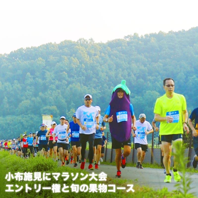 【ふるさと納税】 第17回小布施見にマラソン大会エントリー権と旬の果物コース
