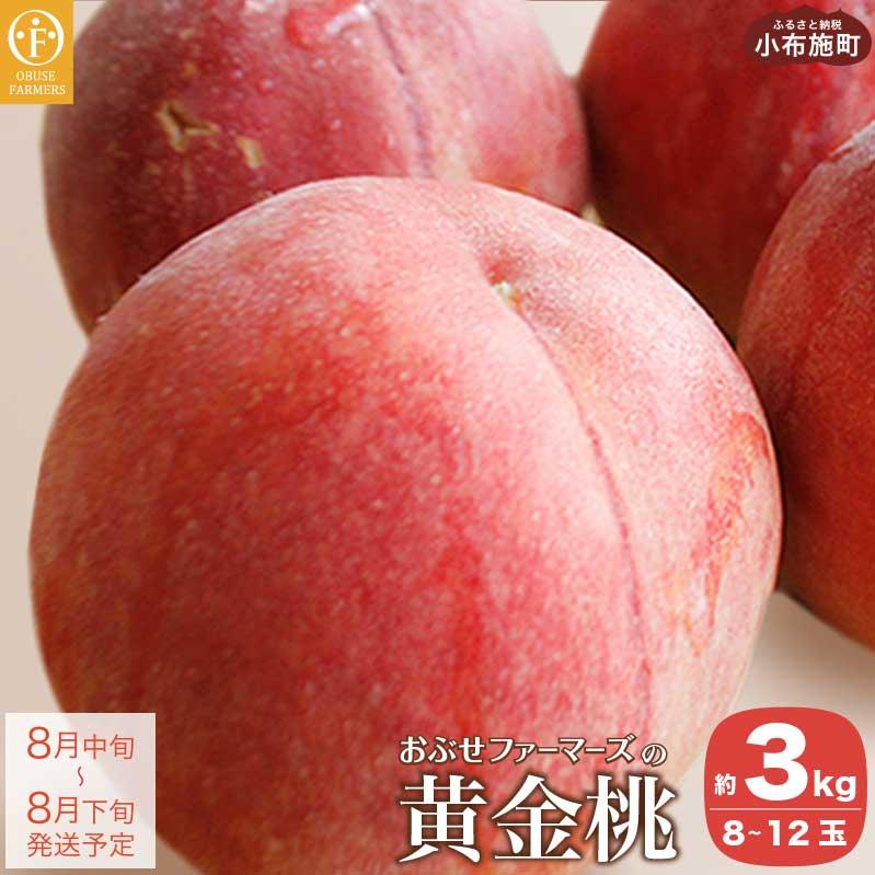 【ふるさと納税】おぶせファーマーズの「黄金桃  約3kg」