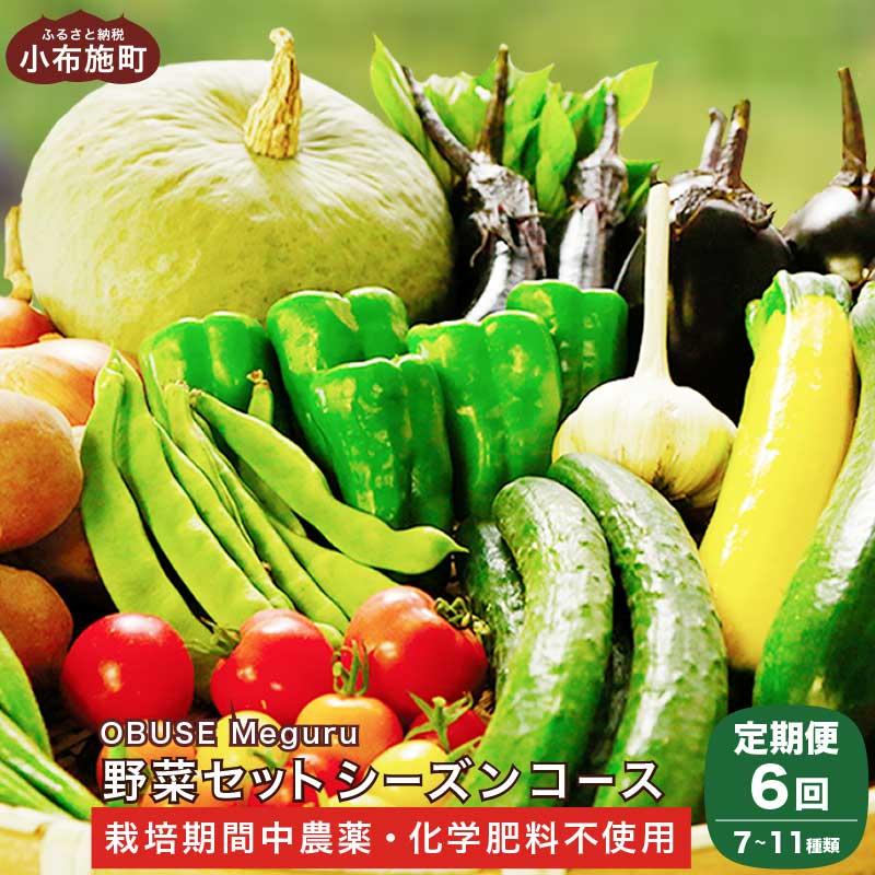 【ふるさと納税】新規就農者応援コース  OBUSE Meguru 野菜セット シーズンコース