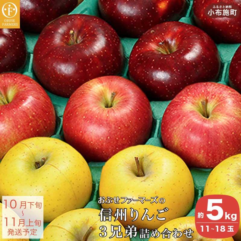 【ふるさと納税】おぶせファーマーズの「信州りんご3兄弟詰合せ 約5kg」