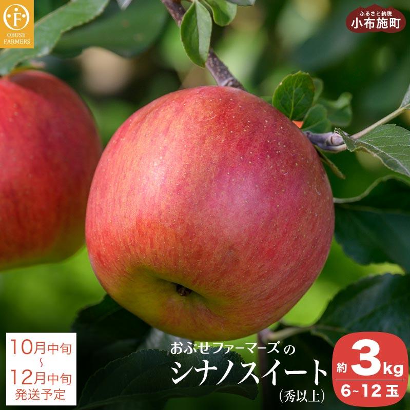 高級品 先行予約 激安挑戦中 秋の味覚を産地よりお届け 数量限定 りんご 林檎 果物 フルーツ 長野 3kg おぶせファーマーズの 秀以上 約3kg シナノスイート ふるさと納税 信州