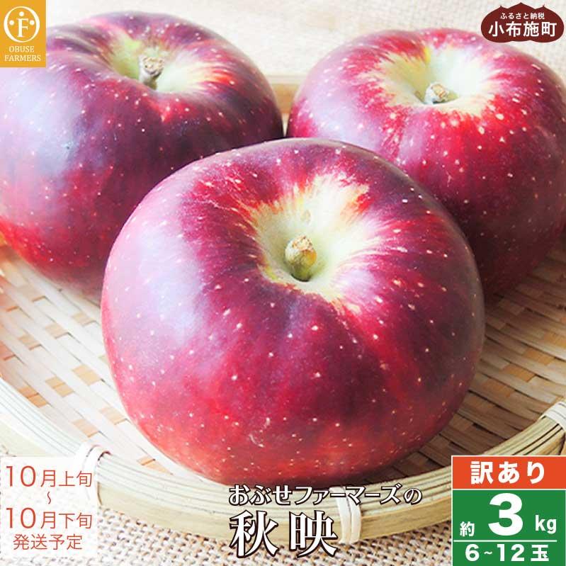 先行予約 数量限定 りんご 林檎 果物 フルーツ 長野 信州 約3kg 家庭用 秋映 訳あり 新品 再再販 送料無料 7~11玉 3kg ふるさと納税 おぶせファーマーズの