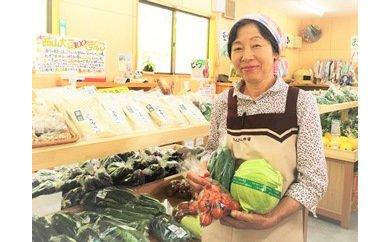 【ふるさと納税】408*さんさん市場 やさい名人がチョイスする新鮮季節の野菜2回セット