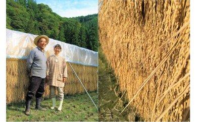 【ふるさと納税】501*小川村自慢のはぜかけ米18キロ 2回に分けてお届け!