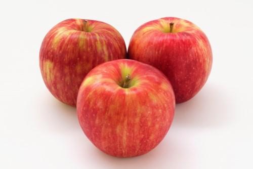 【ふるさと納税】【先行予約】 飯綱町 町田さんちのりんご 【 サンつがる 】特秀5kg(サイズおまかせ)リンゴ 5kg 信州 長野 お届け:2019年9月初旬~