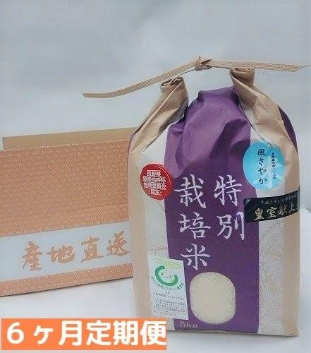 ふるさと納税 定期便 「風さやか」は長野県のオリジナル米です。安心で品質の良い風さやかを6ヶ月連続でお届けします。旨味が強く、おいしい新米をぜひご賞味ください。 【ふるさと納税】 長野県飯綱町の黒川米 【 白米 】 風さやか 5kg【 6カ月 定期便 5kg×6回】(令和元年産 新米 ) 信州の環境にやさしい農産物 特別栽培米 信州 長野 定期 6回