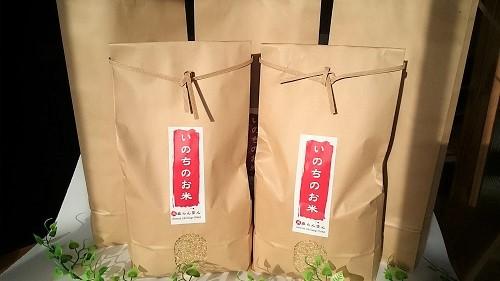 【ふるさと納税】【自然栽培 天真らんまん】いのちのお米 25kg こしひかり(5分づき米)令和元年度産 自然栽培米 無肥料 ・ 無農薬 【米 お米 玄米】