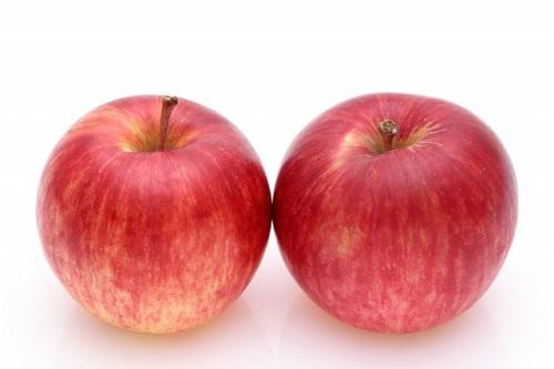 【ふるさと納税】【先行予約】 ヤマハチ農園 の りんご サンつがる 訳あり 10kg BLOF理論栽培 長野県飯綱産 【 リンゴ 信州 長野 】 お届け:2020年9月上旬~