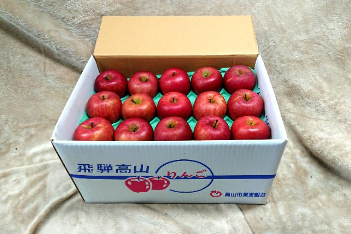 【ふるさと納税】飛騨高山産 山本果樹園 旬の飛騨りんご 約8kg(24個~30個) b541
