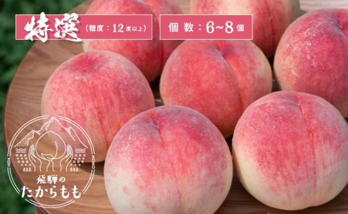 【ふるさと納税】飛騨のたから桃 桃 特選 糖度12度以上 6-8玉 朝採れ 白桃 ※7月末~順次お届 b547
