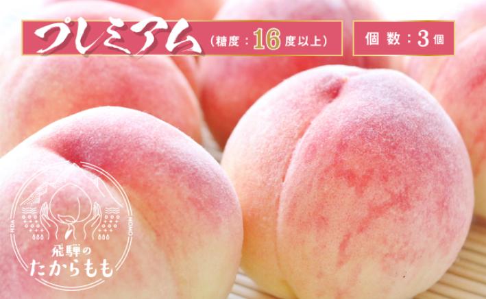 【ふるさと納税】飛騨のたから桃 プレミアム 糖度16度以上 3玉 朝採れ 白桃 ※7月末~順次お届 c513
