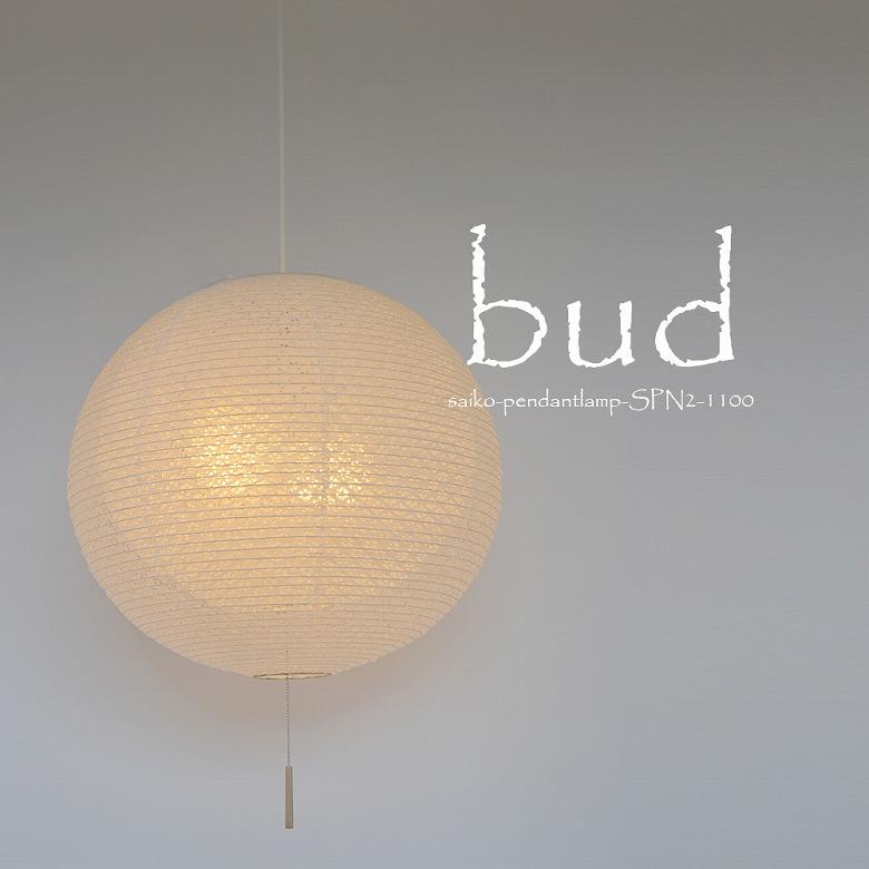 【ふるさと納税】D27-01 bud SPN2-1100 小梅白in小梅白