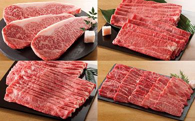 【ふるさと納税】58E041 飛騨牛食べ比べコース