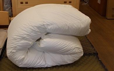 【ふるさと納税】ハルピン産ホワイトマザーグース 羽毛ふとん 0.9Kg
