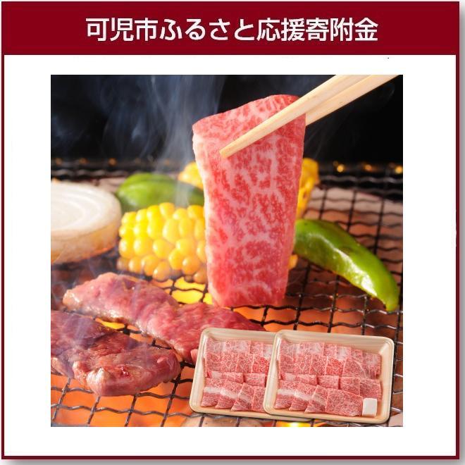 【ふるさと納税】飛騨牛 焼肉用ロース1kg(500g×2)