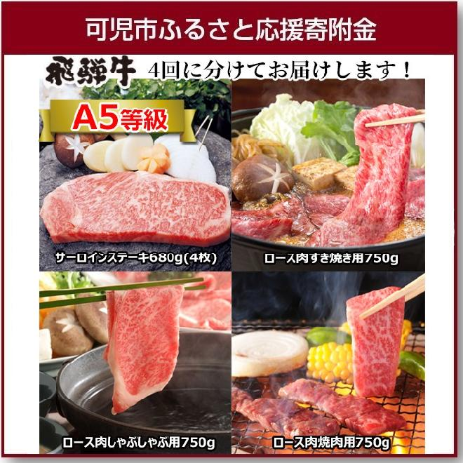 【ふるさと納税】A5等級 プレミアム飛騨牛贅沢食べ比べセット ※4回に分けてのお届けとなります。