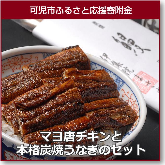 【ふるさと納税】マヨ唐チキンと本格炭焼うなぎのセット