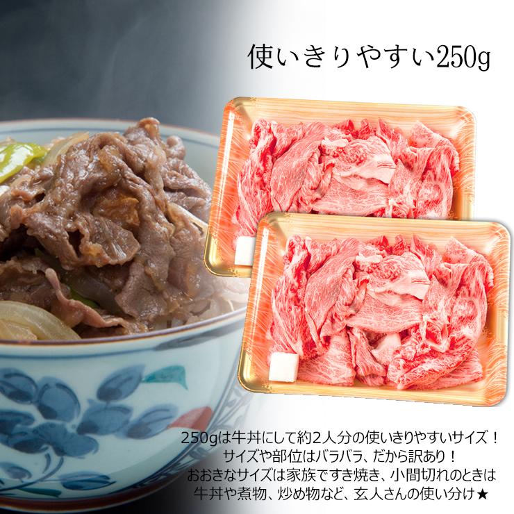 【ふるさと納税】飛騨牛切り落とし500g(250g×2)
