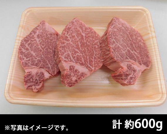 【ふるさと納税】No.106 飛騨牛ヒレステーキ用計約600g (5等級)/冷凍