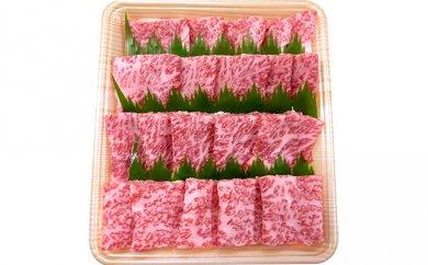 【ふるさと納税】5等級 飛騨牛ロース又は肩ロース 焼肉用(約500g) 【牛肉】