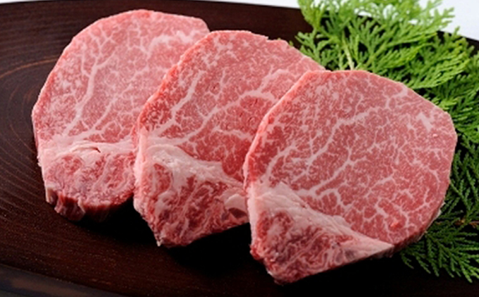 【ふるさと納税】飛騨牛ヒレ ステーキ用170g×2枚 【肉/牛肉/ヒレ】