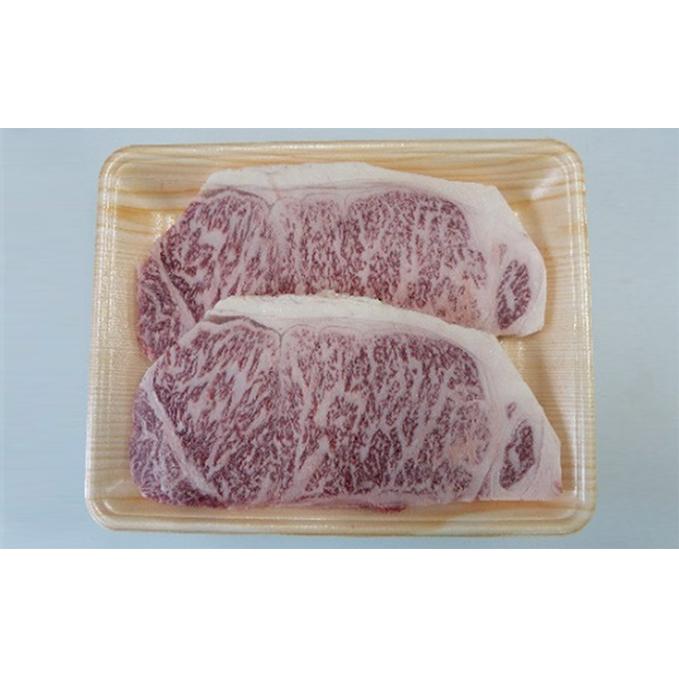 【ふるさと納税】2ヶ月頒布会 A5等級飛騨牛サーロインステーキ用500g(1枚約250g×2枚) 【定期便・牛肉・サーロイン】